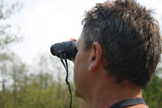 Vögel beobachten & bestimmen tipps zur vogelbeobachtung